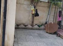 فروش ویلا 124 متر در تالش در شیپور-عکس کوچک
