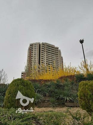 192 متری 3 خوابه برج دوقلوی المپیک  در گروه خرید و فروش املاک در تهران در شیپور-عکس4
