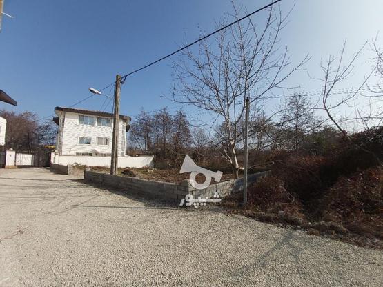 زمین 321 متری خط 8 در گروه خرید و فروش املاک در مازندران در شیپور-عکس1