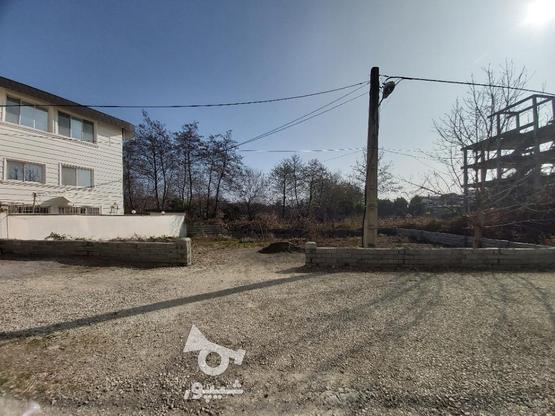زمین 321 متری خط 8 در گروه خرید و فروش املاک در مازندران در شیپور-عکس2