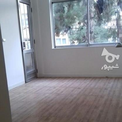 اجاره آپارتمان 270 متر در یوسف آباد در گروه خرید و فروش املاک در تهران در شیپور-عکس9