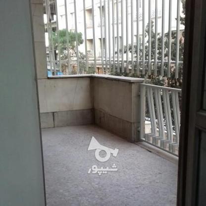 اجاره آپارتمان 270 متر در یوسف آباد در گروه خرید و فروش املاک در تهران در شیپور-عکس2