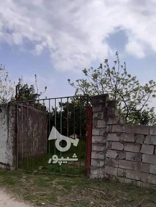 فروش زمین تجاری مسکونی 233 متر در محمودآباد در گروه خرید و فروش املاک در مازندران در شیپور-عکس1