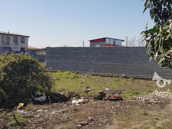 فروش زمین سندداردر میدان امام خ علیپور اخلاص  در گروه خرید و فروش املاک در مازندران در شیپور-عکس1