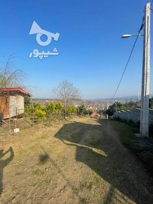 فروش زمین با چشم انداز بی نظیر در اطاقور در گروه خرید و فروش املاک در گیلان در شیپور-عکس3