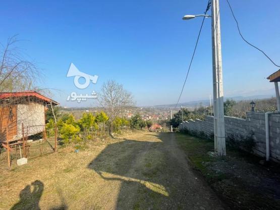 فروش زمین با چشم انداز بی نظیر در اطاقور در گروه خرید و فروش املاک در گیلان در شیپور-عکس4