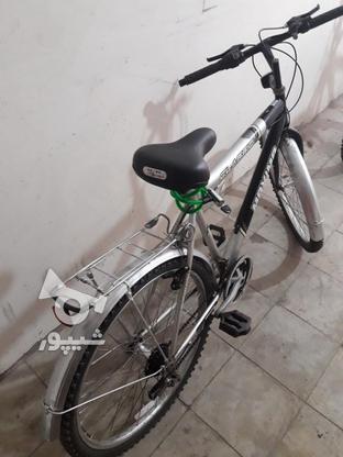 فروش دوچرخه در گروه خرید و فروش ورزش فرهنگ فراغت در گیلان در شیپور-عکس4