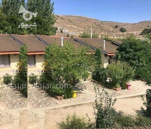 باغ 1205 متری در اشتهارد باسندتکبرگ باشرایط ویژه در گروه خرید و فروش املاک در البرز در شیپور-عکس9