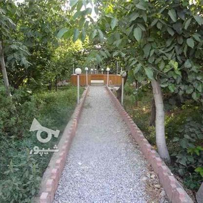 باغ 1205 متری در اشتهارد باسندتکبرگ باشرایط ویژه در گروه خرید و فروش املاک در البرز در شیپور-عکس6