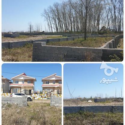 فروش زمین مسکونی 260 متری با پروانه  در گروه خرید و فروش املاک در گیلان در شیپور-عکس1