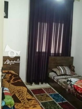 فروش آپارتمان 78 متر در بابل در گروه خرید و فروش املاک در مازندران در شیپور-عکس3