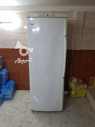 فریزر بدون برفک الکترو استیل درجه یک  در گروه خرید و فروش لوازم خانگی در مازندران در شیپور-عکس2