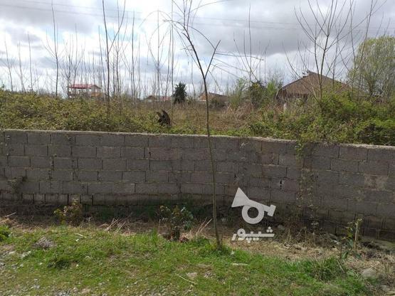 فروش زمین 3500متری مسکونی جاده کیاشهر در گروه خرید و فروش املاک در گیلان در شیپور-عکس1