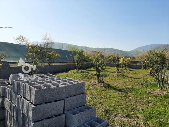 زمین 370 متری خوش قواره چشم انداز عالی چالوس روستای پیچیده در گروه خرید و فروش املاک در مازندران در شیپور-عکس2