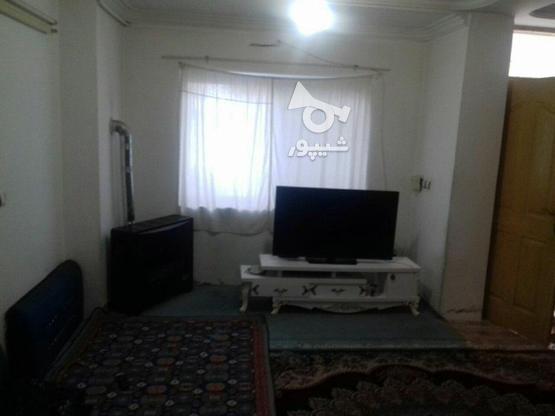 فروش ویلاهمکف  80 متر در محمودآباد در گروه خرید و فروش املاک در مازندران در شیپور-عکس4