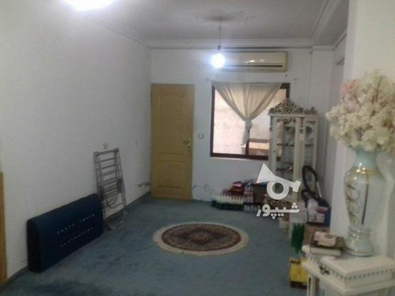 فروش ویلاهمکف  80 متر در محمودآباد در گروه خرید و فروش املاک در مازندران در شیپور-عکس3