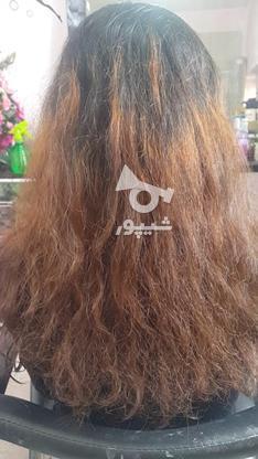 احیا و صافی موهای خشک و وز در گروه خرید و فروش خدمات و کسب و کار در اصفهان در شیپور-عکس2
