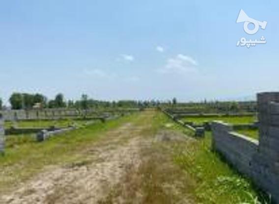 زمینی 240متری مسکونی معاوضه بااتومبیل  در گروه خرید و فروش املاک در مازندران در شیپور-عکس1