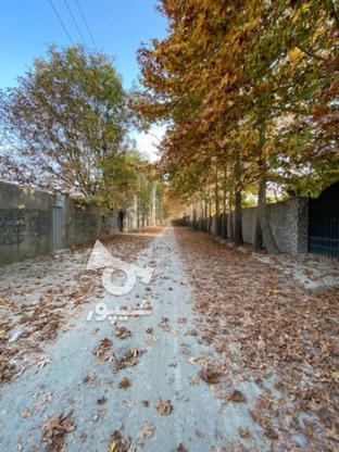 فروش زمین  500 متر در تهران دشت - بحر خیابان شیرازی آران در گروه خرید و فروش املاک در البرز در شیپور-عکس1