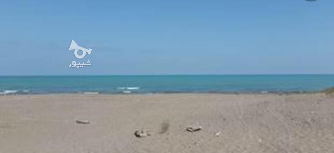 200 مترزمین ساحلی با موقعیت عالی به قیمت در گروه خرید و فروش املاک در مازندران در شیپور-عکس1