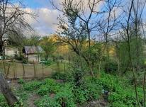 فروش زمین مسکونی 4000 متر در زمیدان در شیپور-عکس کوچک