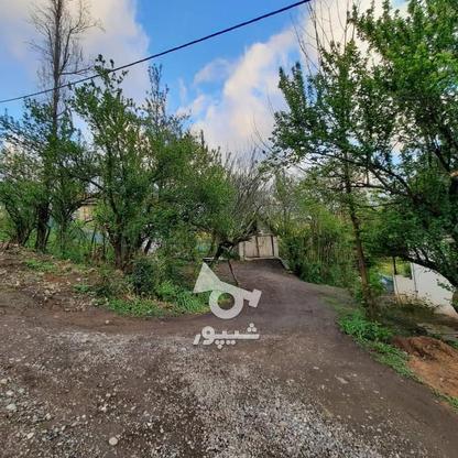 فروش زمین مسکونی 4000 متر در زمیدان در گروه خرید و فروش املاک در گیلان در شیپور-عکس6