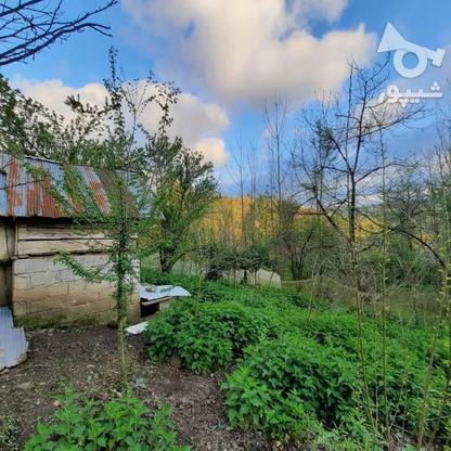 فروش زمین مسکونی 4000 متر در زمیدان در گروه خرید و فروش املاک در گیلان در شیپور-عکس3