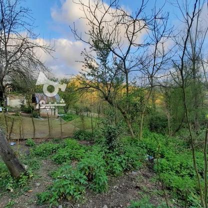 فروش زمین مسکونی 4000 متر در زمیدان در گروه خرید و فروش املاک در گیلان در شیپور-عکس1