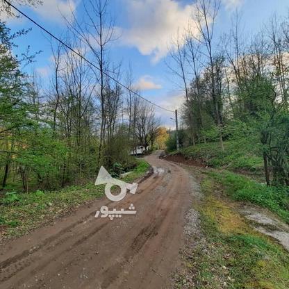 فروش زمین مسکونی 4000 متر در زمیدان در گروه خرید و فروش املاک در گیلان در شیپور-عکس11
