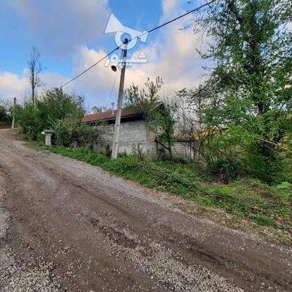 فروش زمین مسکونی 4000 متر در زمیدان در گروه خرید و فروش املاک در گیلان در شیپور-عکس10