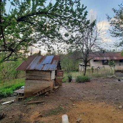 فروش زمین مسکونی 4000 متر در زمیدان در گروه خرید و فروش املاک در گیلان در شیپور-عکس9