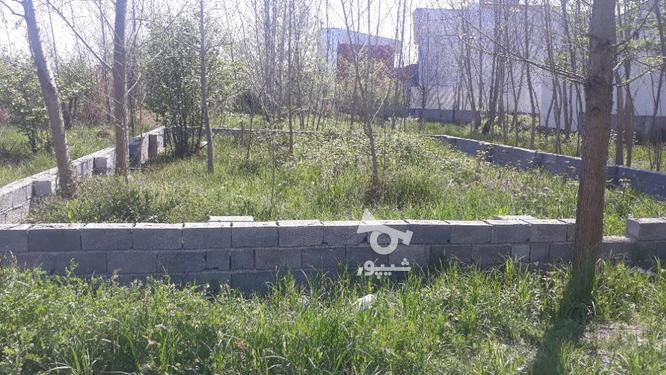 زمین مسکونی 150 متری در لنگرود در گروه خرید و فروش املاک در گیلان در شیپور-عکس3