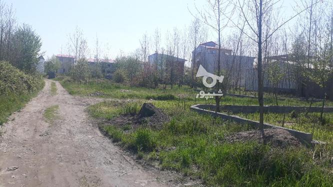 زمین مسکونی 150 متری در لنگرود در گروه خرید و فروش املاک در گیلان در شیپور-عکس2