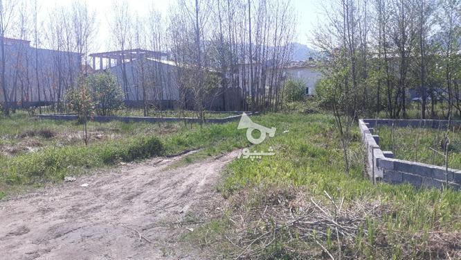 زمین مسکونی 150 متری در لنگرود در گروه خرید و فروش املاک در گیلان در شیپور-عکس1