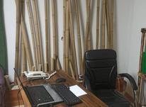 استخدام همکار اداری در شیپور-عکس کوچک
