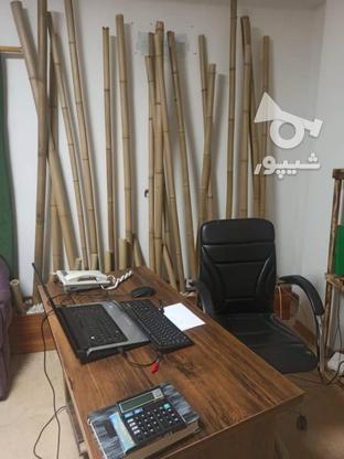 استخدام همکار اداری / منشی خانم در گروه خرید و فروش استخدام در مازندران در شیپور-عکس1