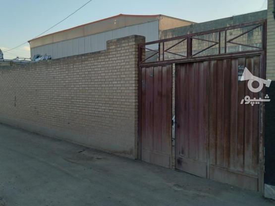 زمین فروشی  در گروه خرید و فروش املاک در اصفهان در شیپور-عکس1