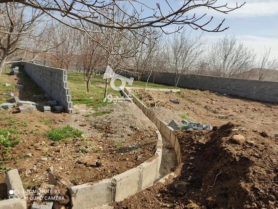فروش باغ گردویی با امکانات در گروه خرید و فروش املاک در خراسان رضوی در شیپور-عکس2