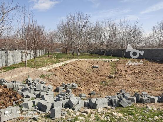 فروش باغ گردویی با امکانات در گروه خرید و فروش املاک در خراسان رضوی در شیپور-عکس3