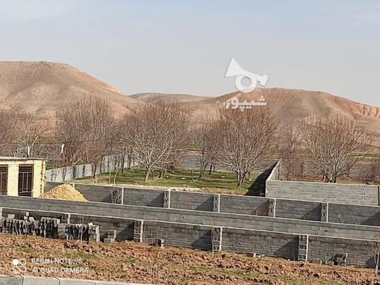 فروش باغ گردویی با امکانات در گروه خرید و فروش املاک در خراسان رضوی در شیپور-عکس1