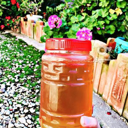 عسل طبیعی با برگه آزمایش در گروه خرید و فروش خدمات و کسب و کار در مازندران در شیپور-عکس1