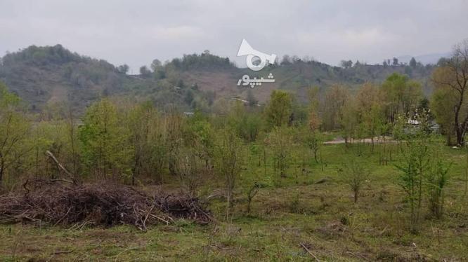 زمین 1100 متری / با کاربری مسکونی/لاهیجان در گروه خرید و فروش املاک در گیلان در شیپور-عکس1