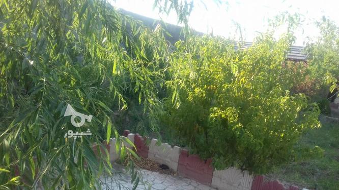 باغ  800متری در گروه خرید و فروش املاک در تهران در شیپور-عکس2