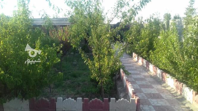 باغ  800متری در گروه خرید و فروش املاک در تهران در شیپور-عکس1