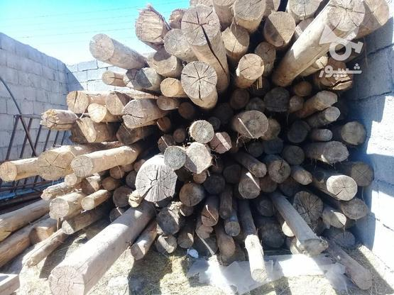 چوب 4 متری  در گروه خرید و فروش خدمات و کسب و کار در آذربایجان غربی در شیپور-عکس3