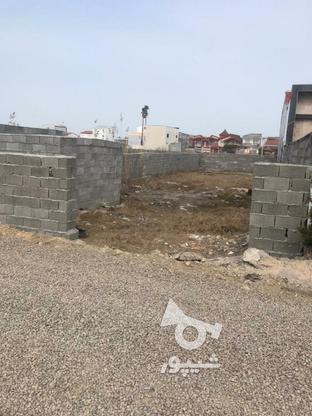 فروش زمین در بهترین منطقه سرخرود در گروه خرید و فروش املاک در مازندران در شیپور-عکس1