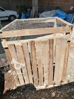 گنجه. قفسه نو 2 لایه طور و راویز زده  در گروه خرید و فروش ورزش فرهنگ فراغت در مازندران در شیپور-عکس3