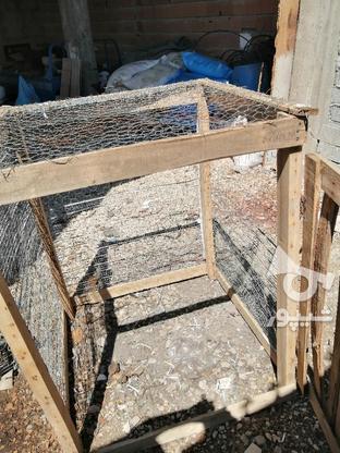 گنجه. قفسه نو 2 لایه طور و راویز زده  در گروه خرید و فروش ورزش فرهنگ فراغت در مازندران در شیپور-عکس4