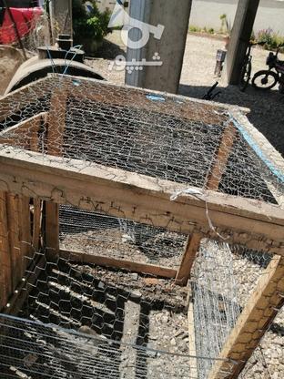 گنجه. قفسه نو 2 لایه طور و راویز زده  در گروه خرید و فروش ورزش فرهنگ فراغت در مازندران در شیپور-عکس2