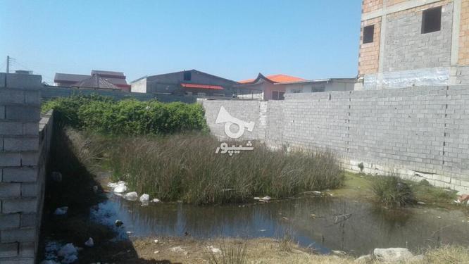 فروش استثنائی زمین در یک محیط فوق العاده در گروه خرید و فروش املاک در مازندران در شیپور-عکس1